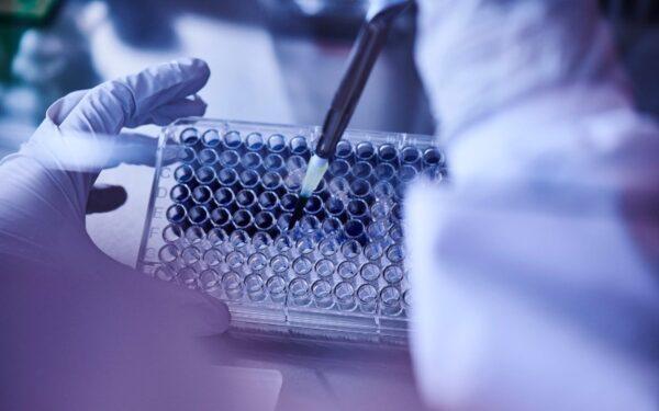 Science Creates Ventures